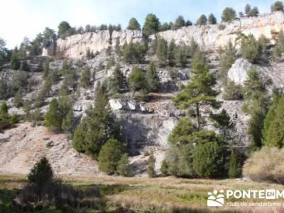 Cañón del Río Lobos - Senderismo Cañón del Río Lobos - ruta senderista soria; viajes organizad